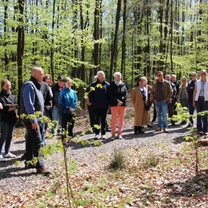 30.4.17 Baumspaziergang durch die Anlagen M. Imig