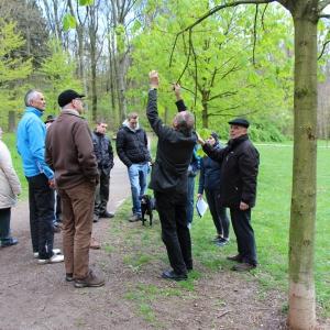 22.4.17 Bäume der Erkenntnis H. Wischnitzki